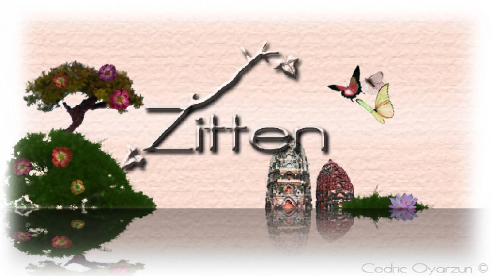 Interview with Zitten © Cedric Oyarzun