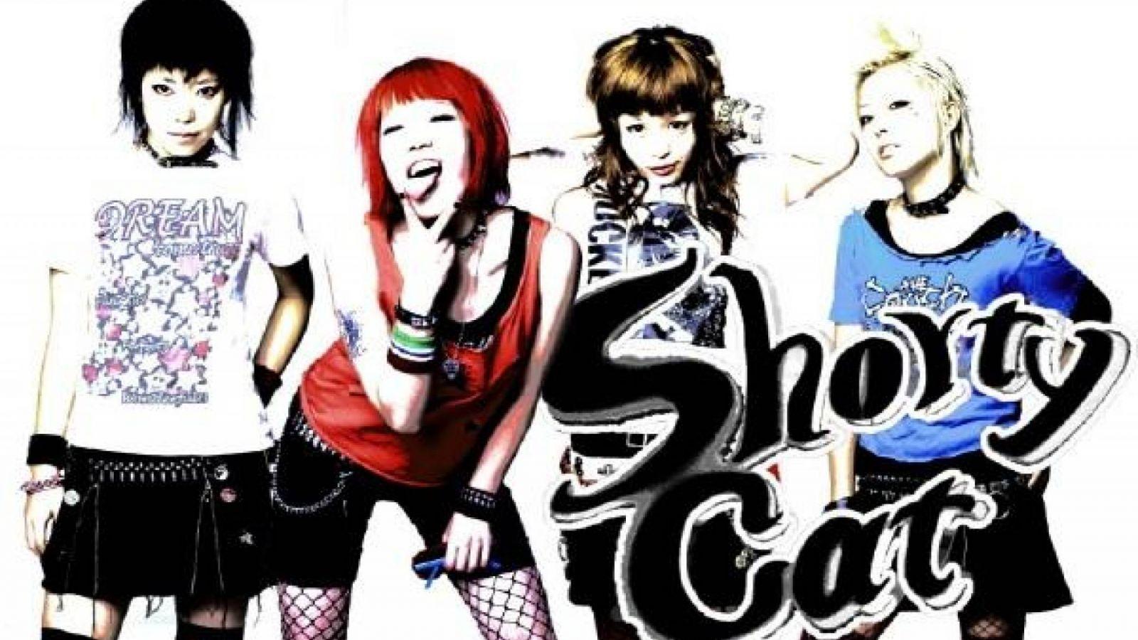 Shorty Cat © Shorty Cat
